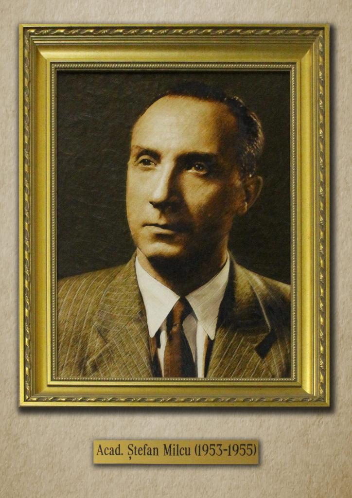 Stefan-Milcu